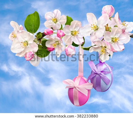 Easter decoration. Apple blossom and Easter eggs on background sky with clouds. - stock photo