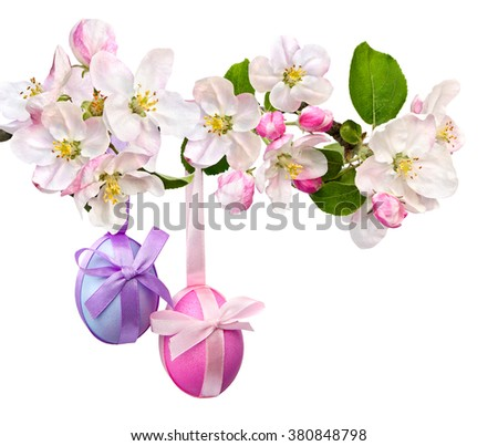Easter decoration. Blossom on apple branch and Easter eggs on a white background - stock photo