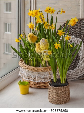 Easter decoration window yellow daffodils-stickers, chickens and eggs - stock photo