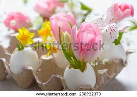 Easter decoration with flowers in egg shells - stock photo