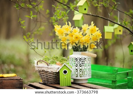 Easter decoration with spring flowers, narcissus blooms. Spring flowers in pots in the garden. Easter Sunday - stock photo