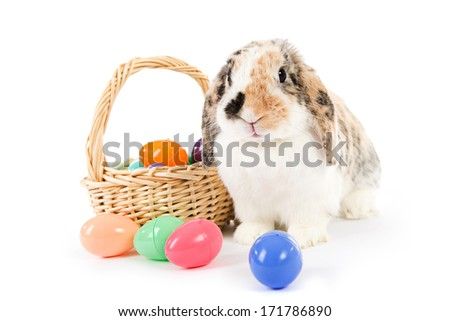 Easter: Easter Bunny With Basket Of Plastic Eggs - stock photo