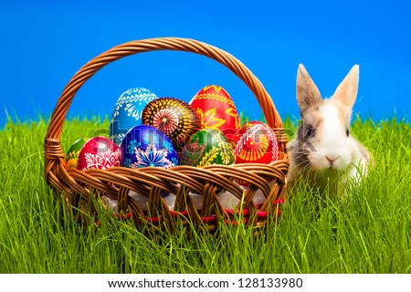 Easter egg and baby bunny on green grass - stock photo