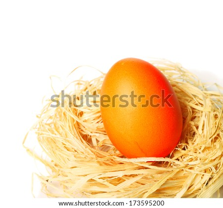 Easter egg in bird's nest over white background