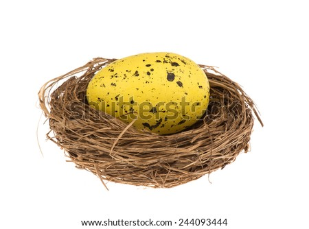 Easter egg in the nest isolated.