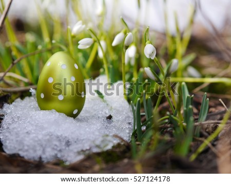 Easter egg meadow snowdrop