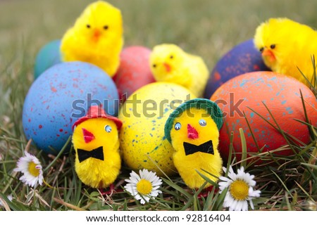 Easter eggs and chicks outdoors in garden