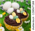 Easter eggs and easter cupcakes in a flower field - stock photo
