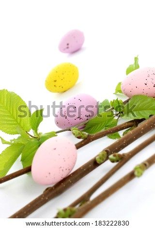 easter eggs and spring branch  on white - stock photo