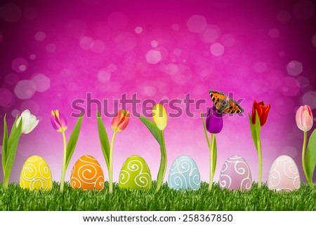 easter eggs and tulips in front of pink background - stock photo
