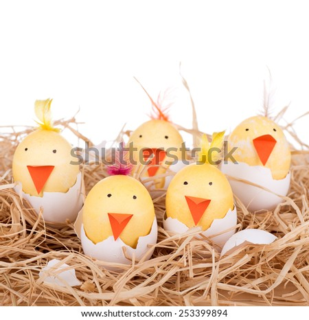 Easter eggs decorated as hatching chicks with a white background - stock photo