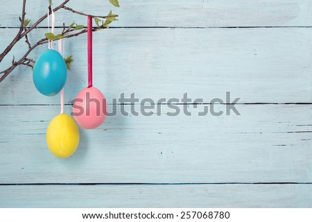 Easter eggs hanging on branch on blue background - stock photo