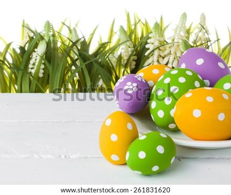 easter eggs hidden in the grass. studio shot - stock photo