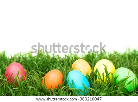 Easter eggs hiding in the grass