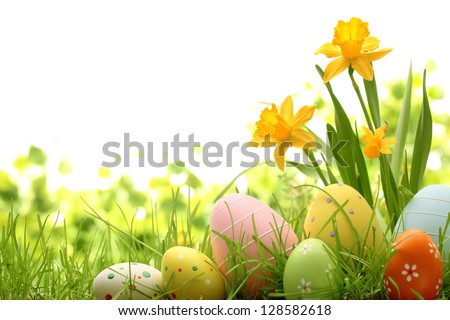 Easter eggs hiding in the grass with daffodil - stock photo