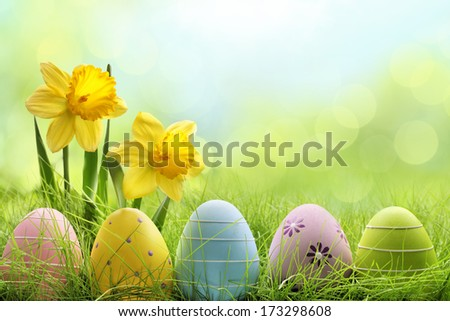 Easter eggs hiding in the grass with daffodil flower - stock photo