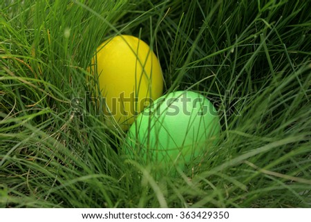 Easter eggs hunt/ easter eggs in the grass