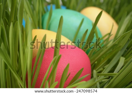 Easter eggs in a row on the grass, closeup photo - stock photo