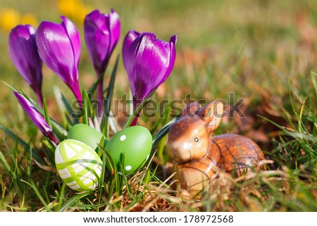 easter eggs in front of crocuses