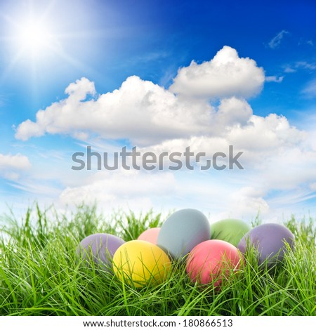 easter eggs in green grass. beautiful sunny blue sky