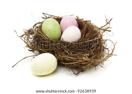 Easter eggs in real bird nest isolated on white
