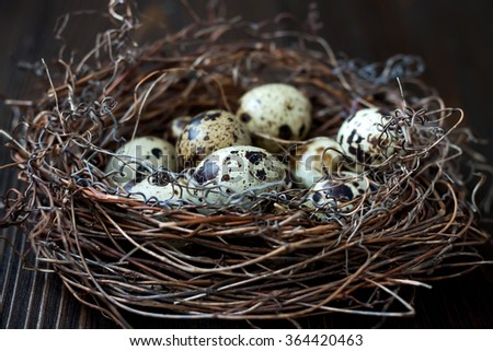 Easter eggs in the nest on rustic wooden background. Selective focus