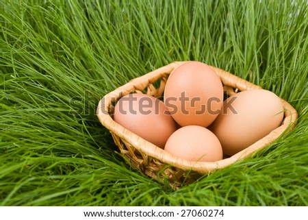 Easter eggs lay in a basket among a grass (natural)