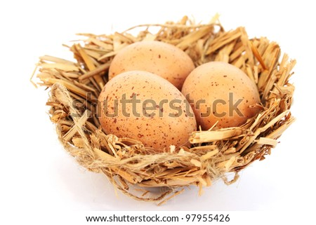 Easter  eggs nest isolated on white background.