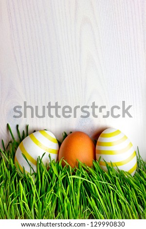 Easter eggs on the grass/Background  with easter eggs and  green grass - stock photo