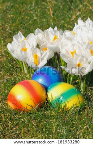 Easter eggs with flowers in a meadow