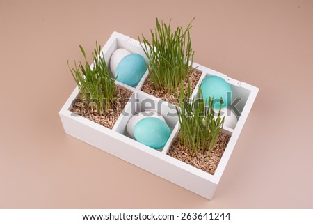 Easter eggs with grass decoration in box  top