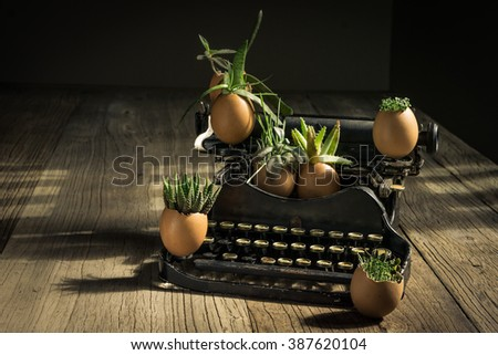 EASTER EGGSHELL PLANTERS & VINTAGE TYPEWRITER  Tiny Easter Eggshell Planters is a perfect seasonal way to bring some special touches to homeâ??s decor.  - stock photo