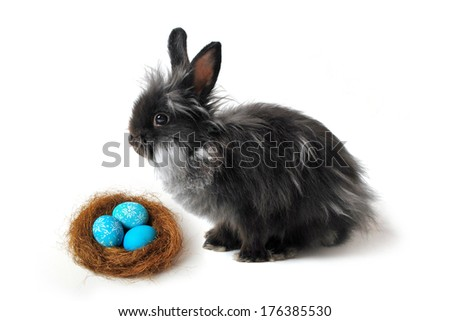 Easter nest and rabbit - stock photo