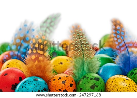 Easter quail eggs painted with feathers, Spring multicolored background. Close up - stock photo