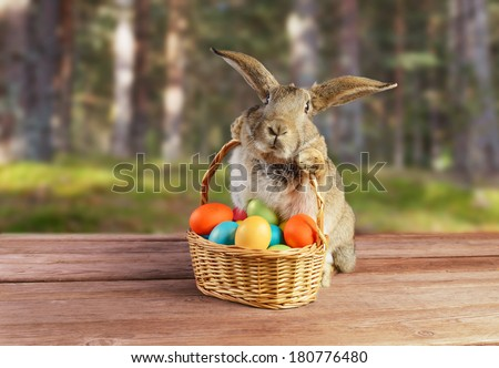 Easter rabbit sits with basket of colored eggs on spring nature - stock photo