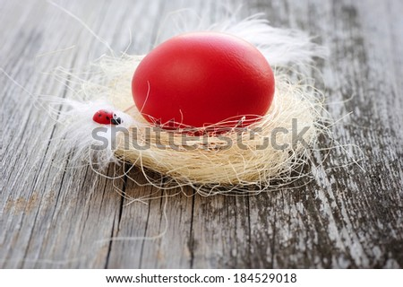 Easter red egg is in a nest on a old wooden background - stock photo
