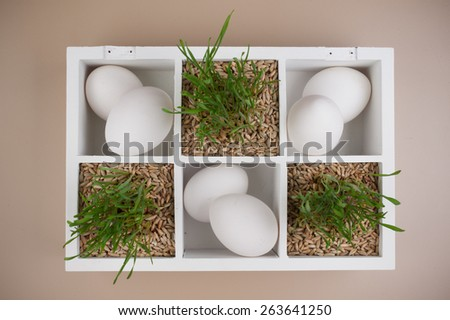 easter spring decoration with grass and white eggs in box  - stock photo