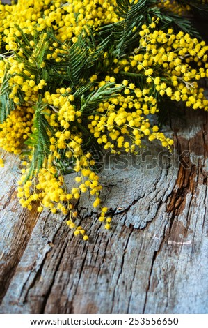 Easter time, yellow mimosa flowers on the old table - stock photo