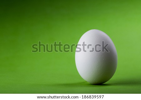 easter white egg on a green background