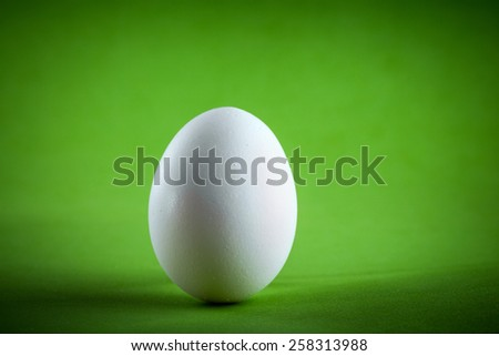 easter white egg on a green paper background