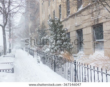 Eastern Parkway, Brooklyn, January 23, 2016 Blizzard