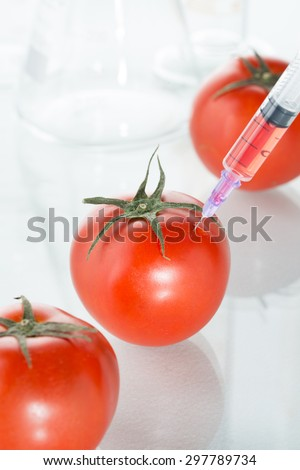 eating genetic modification red tomato laboratory glassware agriculture - stock photo