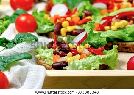 Eating healthy food - Vegetarian food (vegetarian sandwich) - stock photo