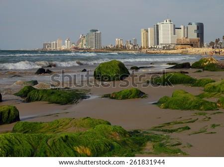 ebb in Tel Aviv. Israel - stock photo