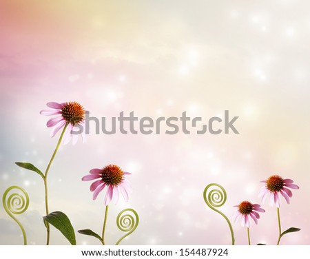 Echinacea and plant tendrils on fantasy pastel pink colored background - stock photo