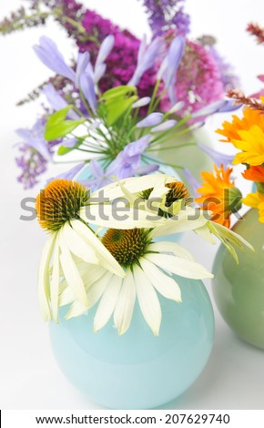 Echinacea, Calendula and other herbal flowers - stock photo