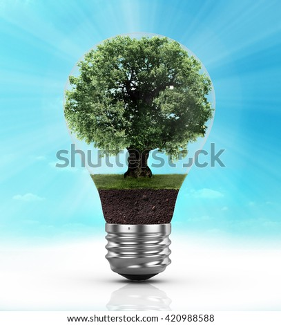 Eco concept. Light bulb with a tree inside. - stock photo