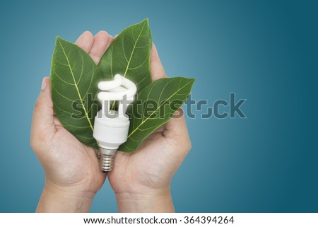 Eco concept. The hands holding bulb and leaf