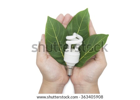 Eco concept. The hands holding bulb and leaf on white background