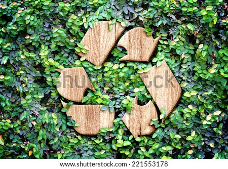Eco concept :Wood texture Recycle icon on green leaves wall - stock photo